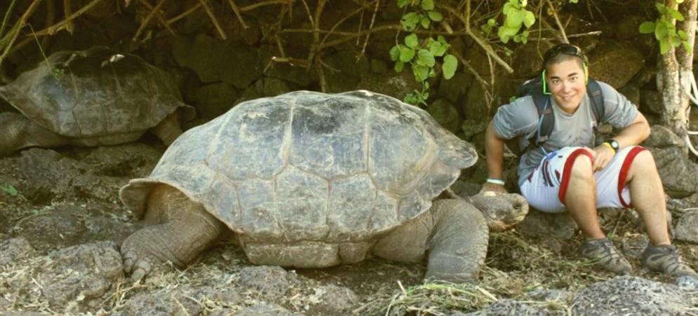 Galapagos Tortoise.c
