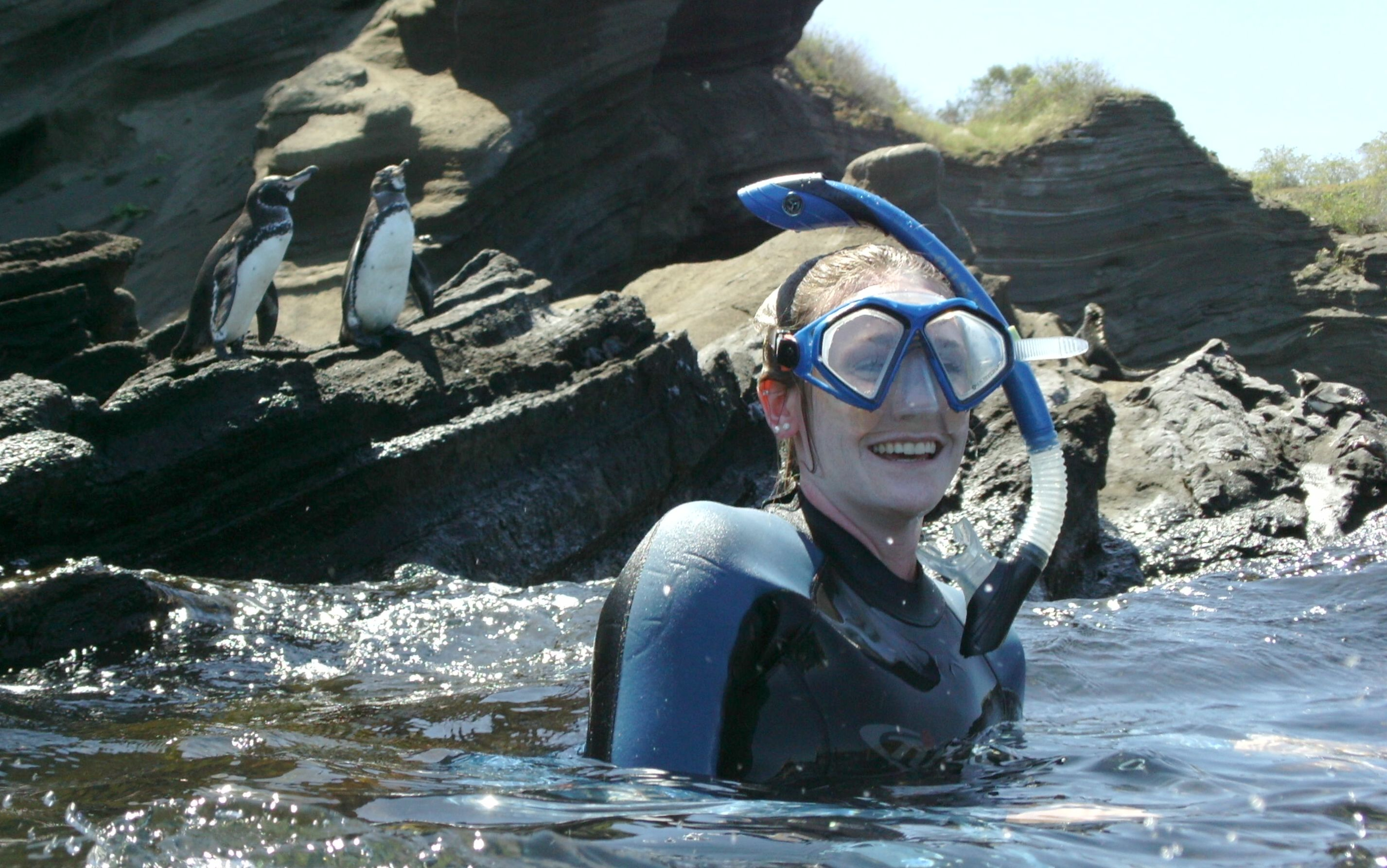 Snorkeling with penguins